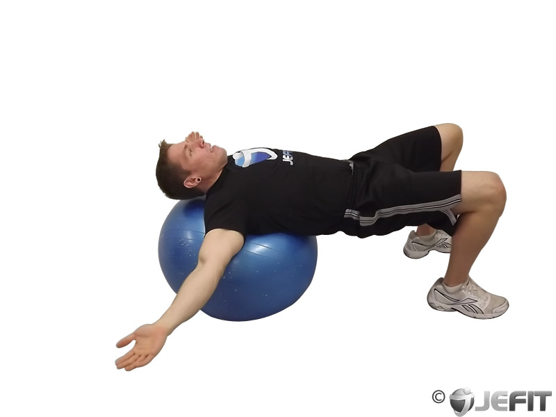 manual of structural kinesiology chapter 1 review exercises